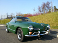 1229 1969 Volkswagen Karmann Ghia Icon